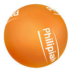 Beach balls 38cm / 15 inch with custom logo image